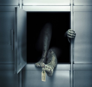 "DVD cover of terrible morgue-based horror ""Unrest"" - don't bother watching it"