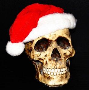 Santa_Skull_by_amethyst_raindrops